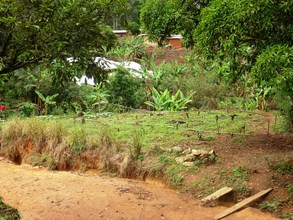 Plot for Green Care Training Centre