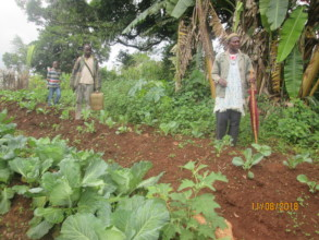 Partial view of an organic garden at Tabah