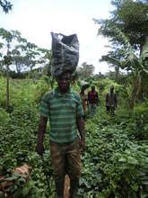 return of a cocoa farmer field