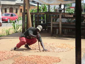 a cocoa farmer drying the fruits of his labor