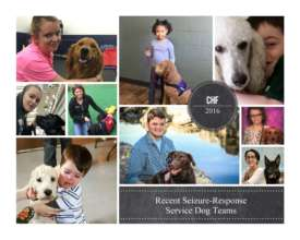 Recent Seizure-Response Service Dog Teams