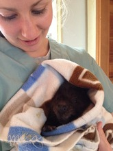 Kim with Infant Beaver