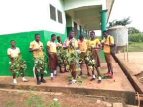 OFSP vines distributed to Bedabour school children