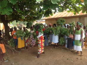OFSP vines distributed to Beposo women