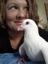 Foster Volunteer Jill with Tink