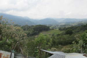 Beautiful green Chiapas