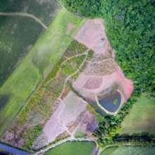 Nightwings Restoration Project