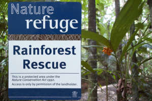New Nature Refuges Created to Protect Rainforest