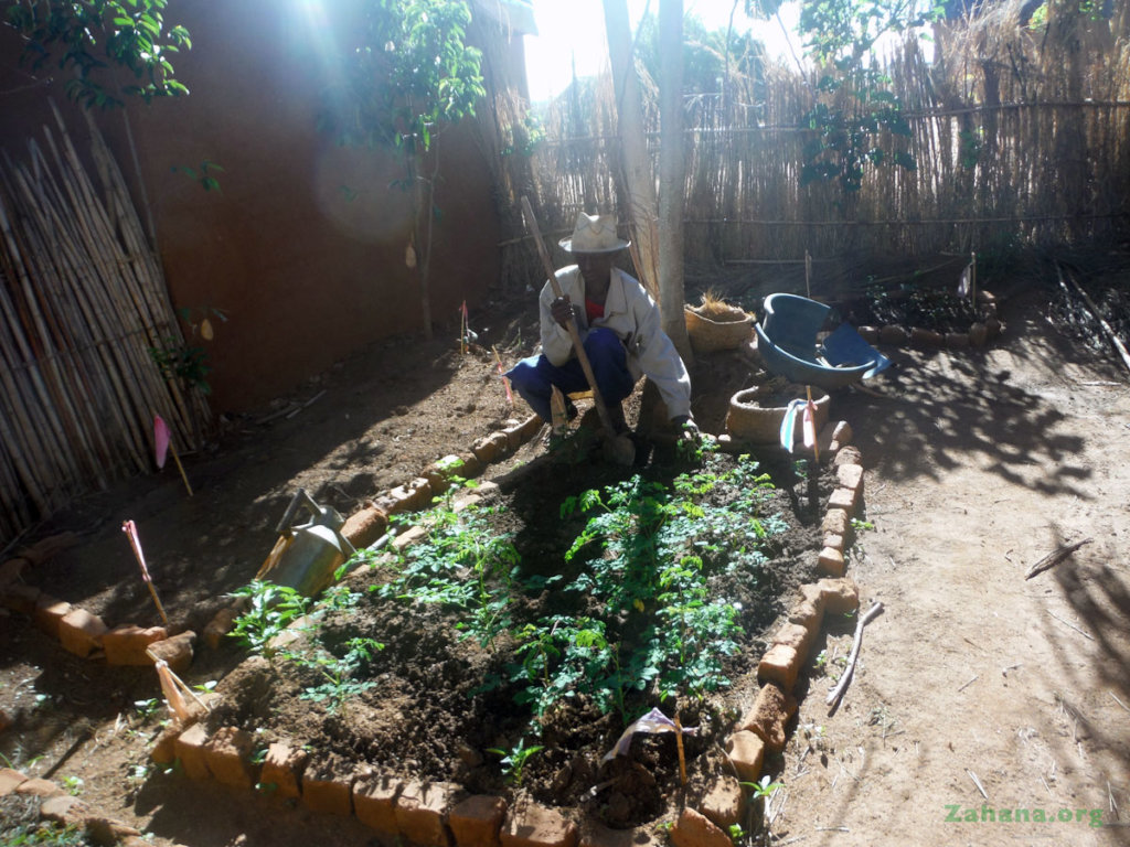 Planting 15000 trees in Madagascar