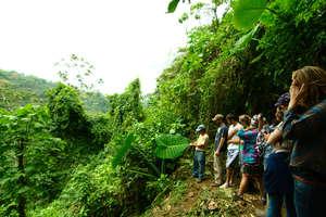 Ecotourism Management