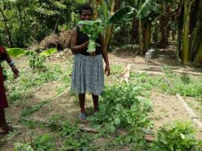 Community gardens in Orotina, Honduras