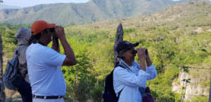 Bird count in the Dry Forest
