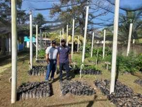 Tree nursery in El Porvenir