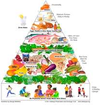 Our goal of balanced meals