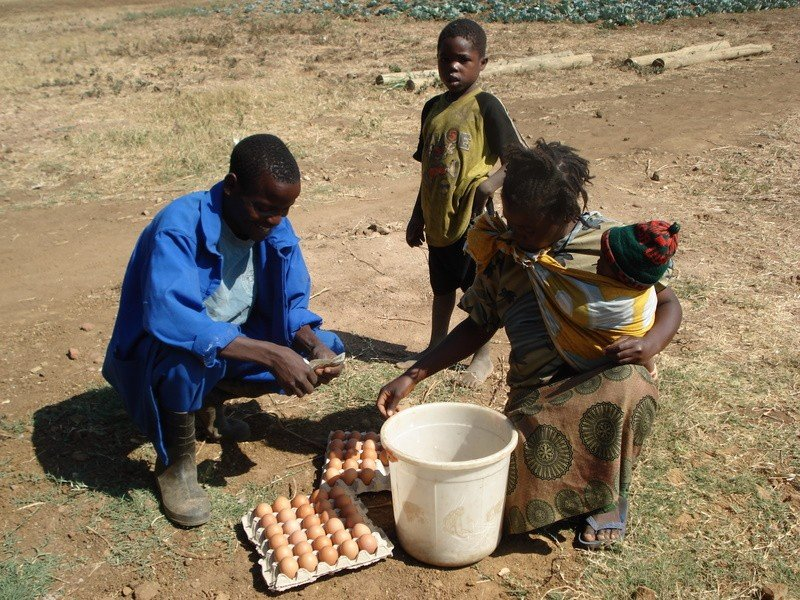 Training Very Disadvantaged Teenagers in Zambia